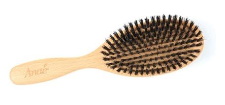 anae-brosse-plate-a-poils-de-sanglier